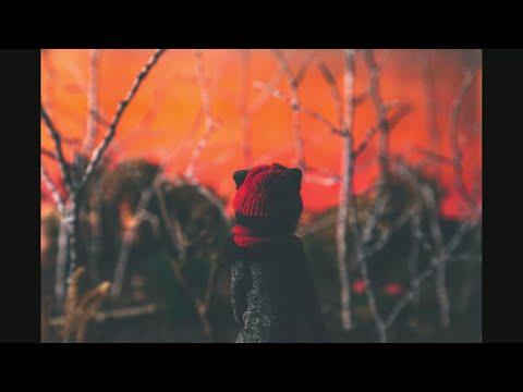 Koala Voice - Vukovi (official video)
